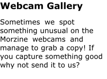 Webcam Gallery Sometimes we spot something unusual on the Morzine webcams and manage to grab a copy! If you capture something good why not send it to us?